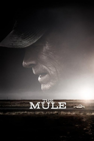 The Mule(2018) Movies