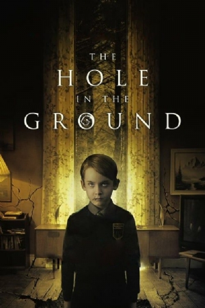 The Hole in the Ground(2019) Movies